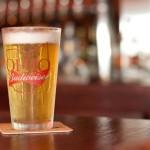 Red Oak Pub Beer